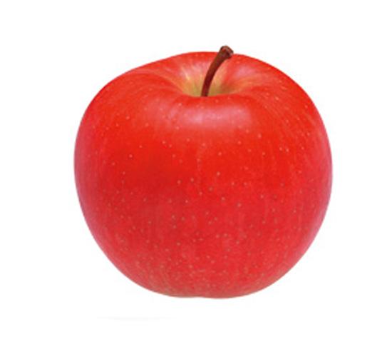 林檎(リンゴ)   焼酎SQUARE